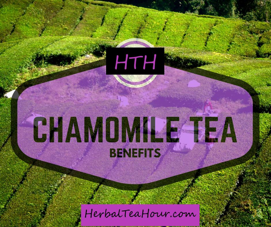 chamomile tea top benefits