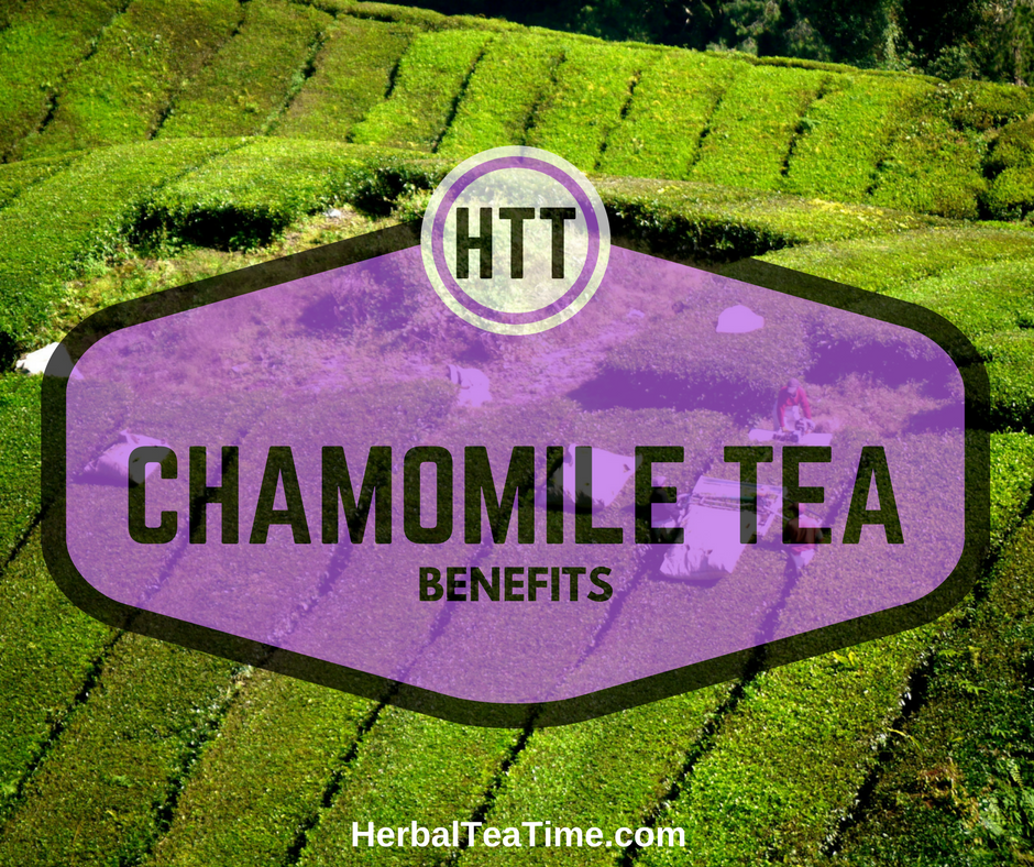Chamomile Tea Benefits: Discover How Chamomile Tea Changes Lives