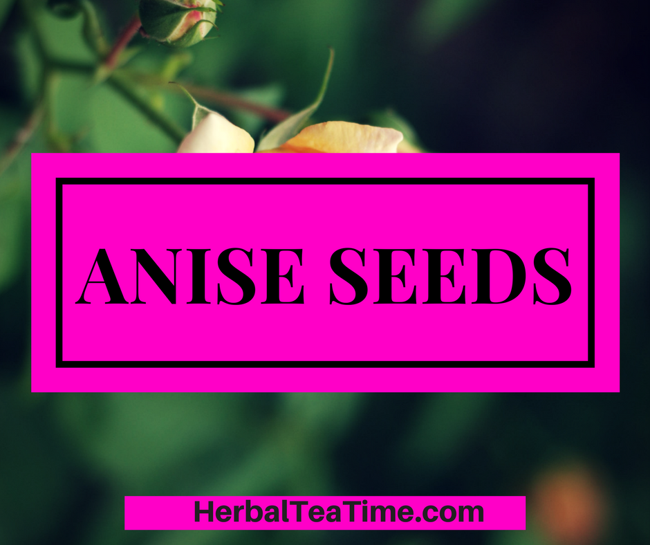 Anise Seeds: The Ultimate to these Healthy Seeds