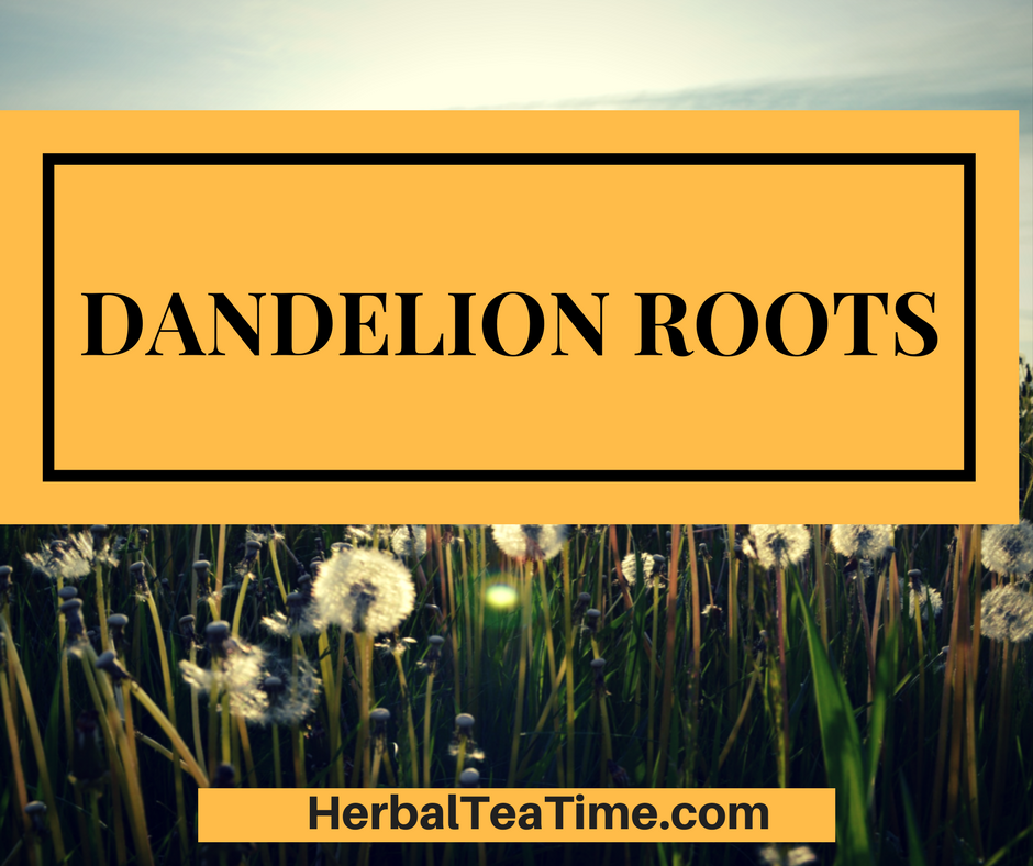 Dandelion Roots: Discover the Power of Dandelion Root Tea