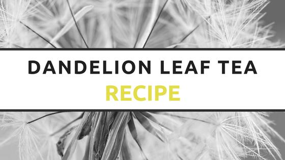 dandelion leaf tea recipe
