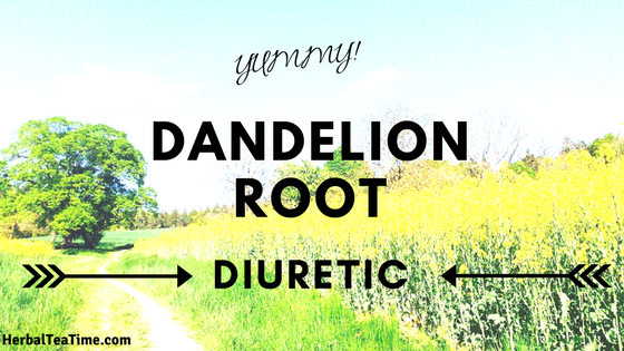 dandelion root diuretic