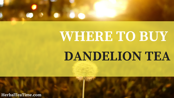 where to buy dandelion tea