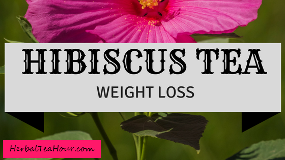 hibiscus tea weight loss