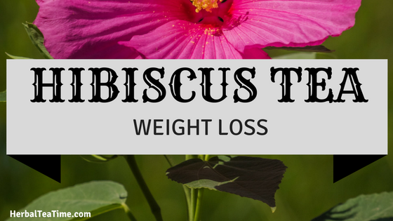 Hibiscus Tea Weight Loss; A Delicious Way to Shed Pounds