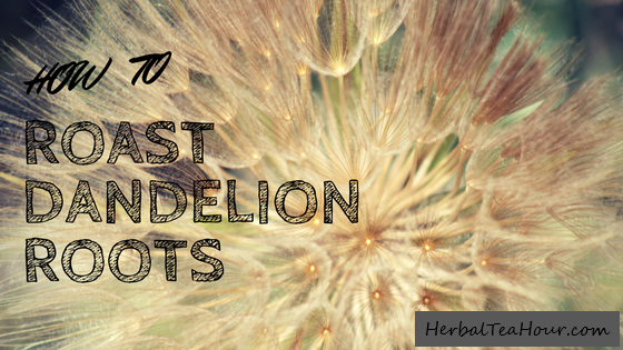 roast dandelion roots