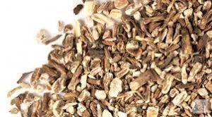 roast dandelion roots for tea