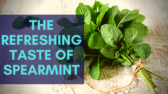 fresh spearmint tea