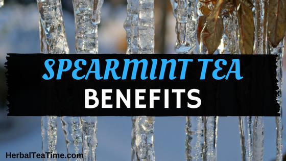 Spearmint Tea Benefits: Top 12 Reasons to Drink this Refreshing Tea