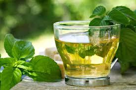 acne spearmint tea