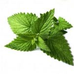 spearmint tea clear skin