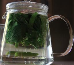 Organic Mint Tea