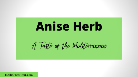 anise herb facts